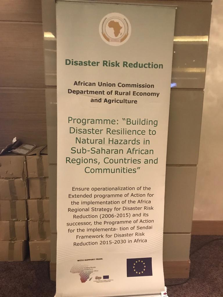 Africa-Arab Platform on Disaster Risk reduction